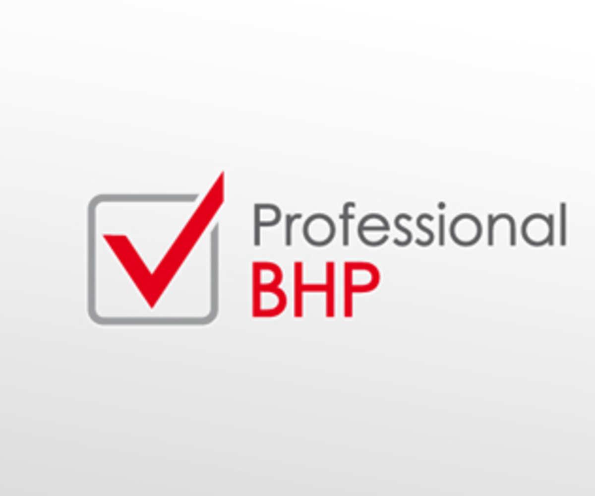 Zielona Góra dla Professional BHP